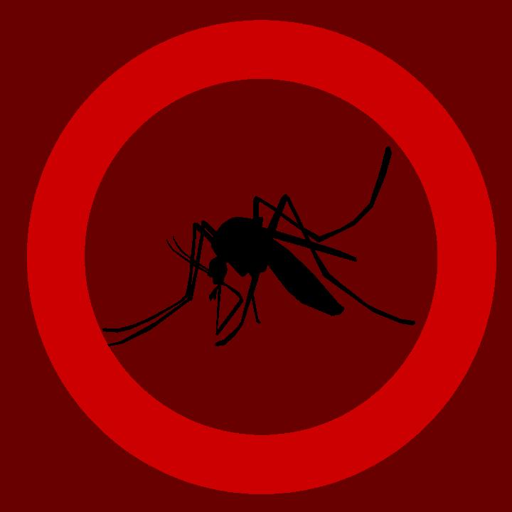 Le moustique vecteur de nombreuses maladies